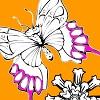 leptir i cvece